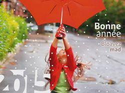 Bonne année Brest 2015