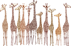 Zebra-and-giraffe-vector-2